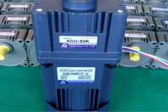 INDUCTION MOTOR 3P INDUCTION MOTOR 6IK200GU-S6GU-50K